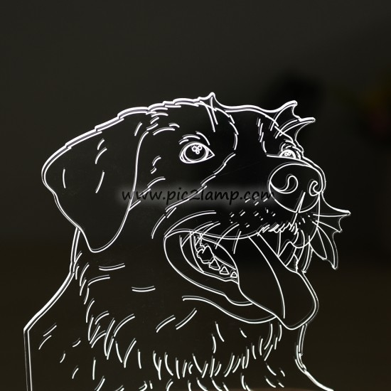 Custom Lovely Pet Photo 3D Lamp, Picture Engraved 3D Night Light