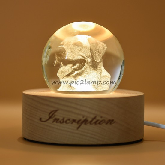 Personalized Pet Photo Crystal Ball Lamp